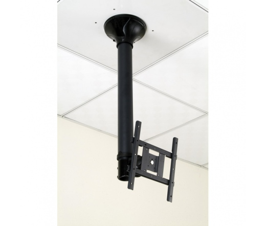ROLINE LCD TV Ceiling Mount 3 karos