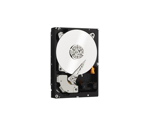 HDD WD 500GB 7200RPM 64MB CACHE SATA-II Raid Edition 4 WD5003ABYZ